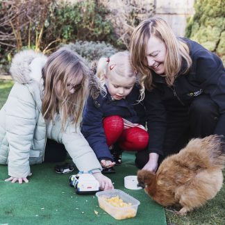 Animal Assisted Activities